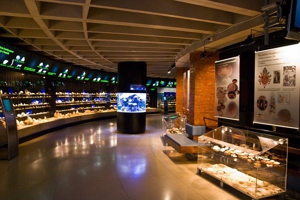 Аквариум-музей