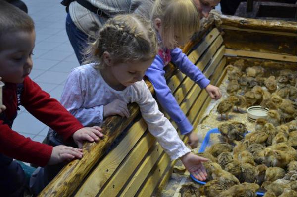 Зоопарк Нижнекамска