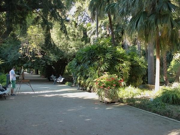 Ботанический сад университета