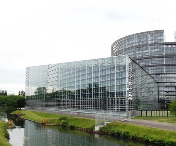 Европейские институты