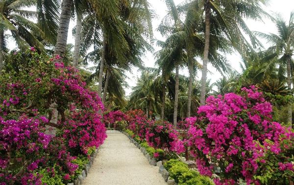 Остров Орхидей (Hoa Lan)