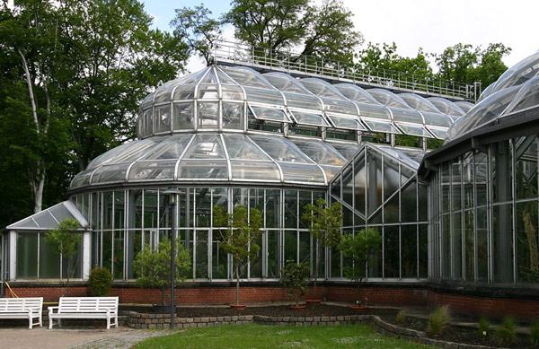 Ботанический сад (Botanischer Garten)