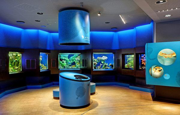 Морской зоопарк Лёббек (Aquazoo Löbbecke Museum Düsseldorf)