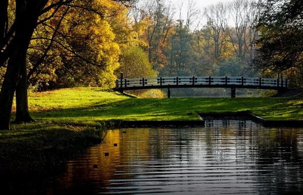 Парк Вондела