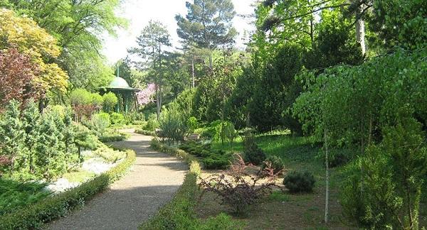 Ботанический сад Тбилиси