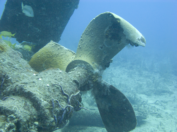 Затонувший катер