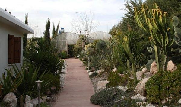 Ботанический парк Eleouthkia