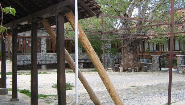 Женский православный монастырь (Продромос)