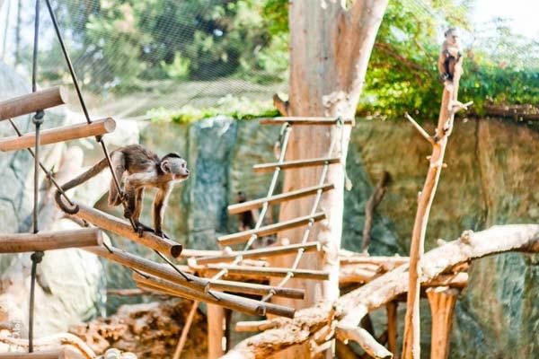 Зоопарк Мелиос