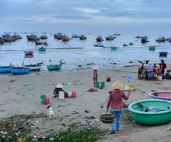 Рыбный рынок Муйне
