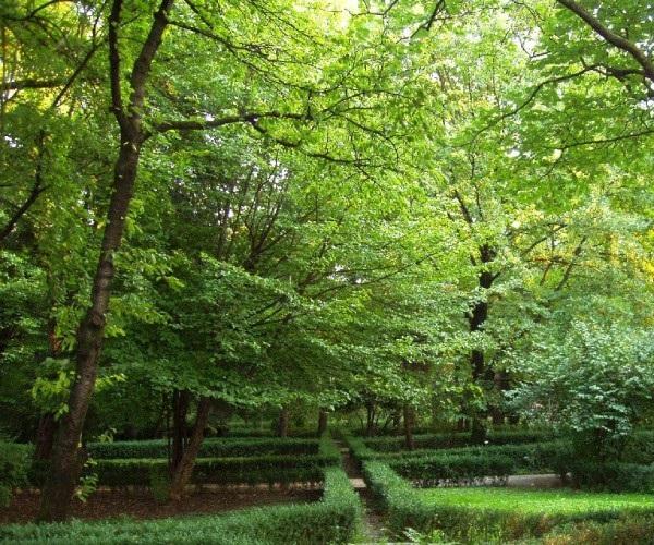Пармский ботанический сад