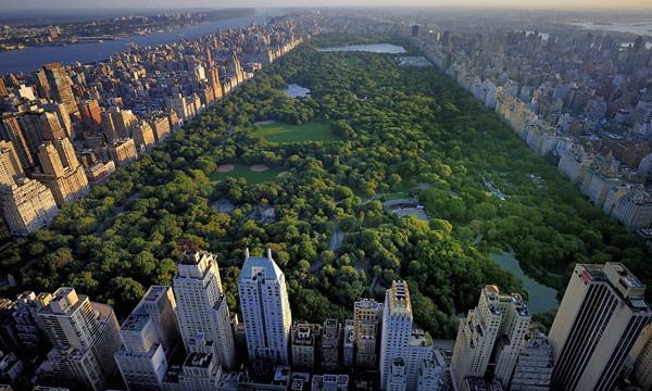 Central Park (Центральный парк)