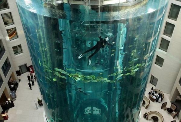 Аквариум Берлина (Aquarium Berlin)