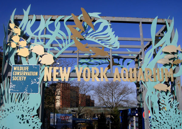New York Aquarium (Нью-Йоркский аквариум)