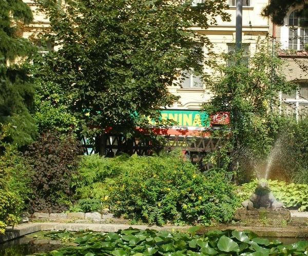 ботанический сад и дендрарий при университете им. Менделя