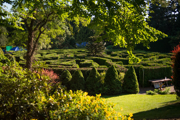 Ботанический сад Ван Дусен (Van Dusen)