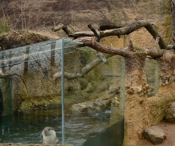 Зоопарк Пльзеня