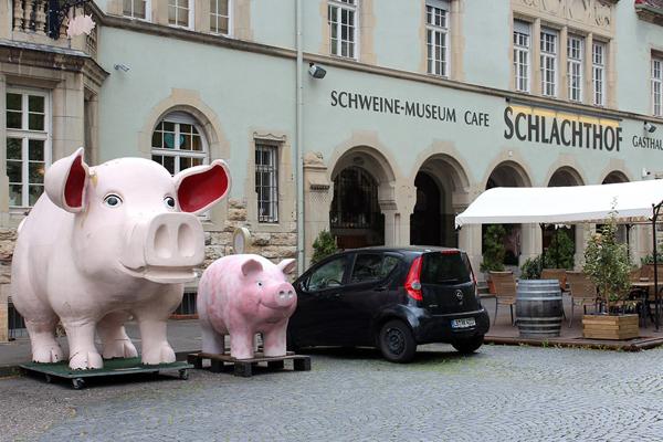 Музей свиней (SchweineMuseum)