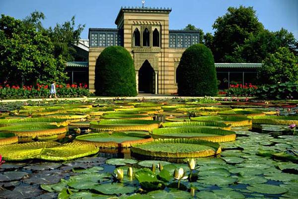 Ботанический сад Вильгельма